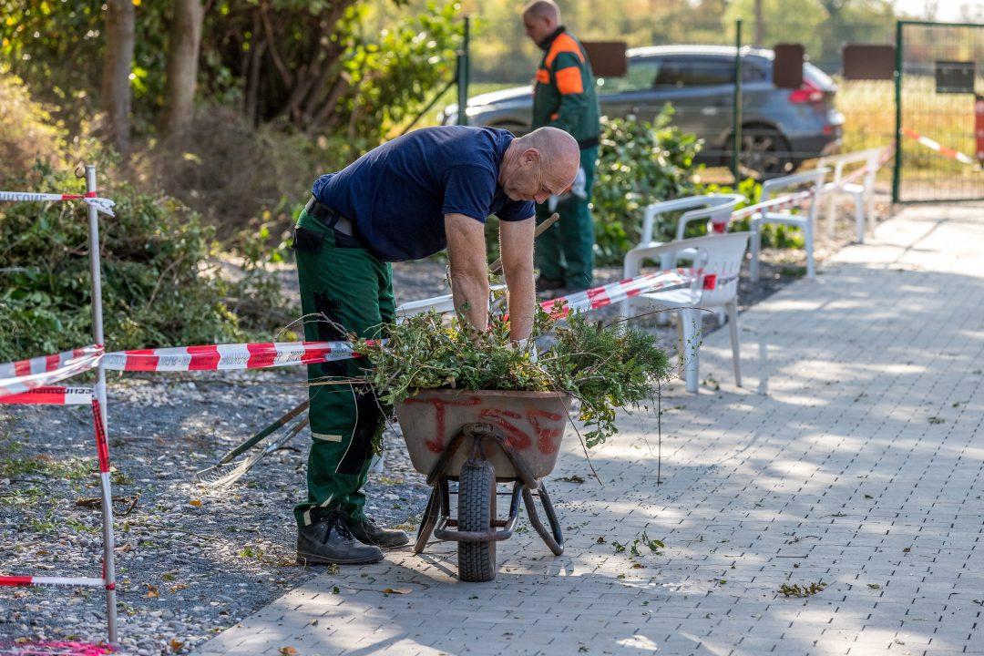 Ein Mann bei der Gartenarbeit vor einer Schubkarre